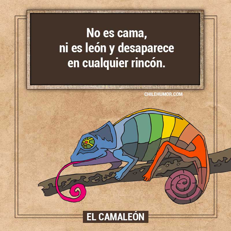 Adivinanzas para niños: El Camaleon
