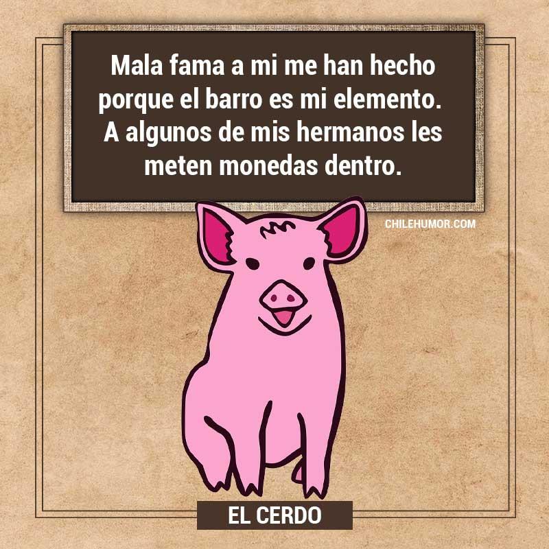 Adivinanzas para niños: El Cerdo