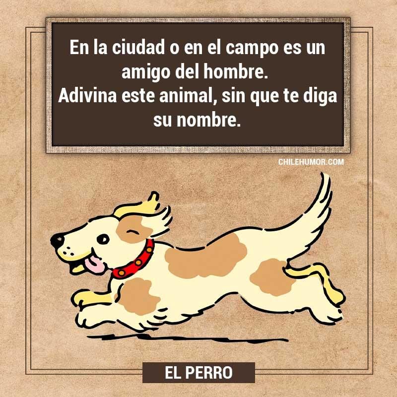 Adivinanzas para niños: El Perro